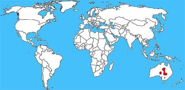 Mapa distribución serpiente taipán del interior