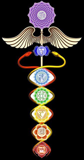 serpiente - Significado Espiritual y simbólico